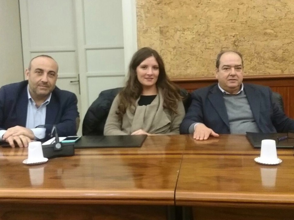 Verde pubblico: il gruppo dell'Udc di Marsala presenta un'interrogazione sulla presenza degli alberi in città
