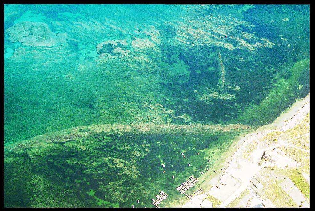 Itinerario subacqueo di Punta d'Alga: alcune precisazioni sulla nascita del progetto