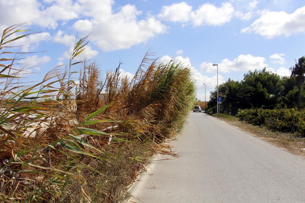 Pulizia dello Stagnone, il sindaco di Marsala sollecita un intervento del Libero Consorzio
