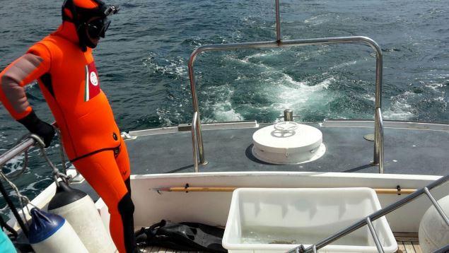 La Guardia Costiera di Pantelleria soccorre e salva una tartaruga