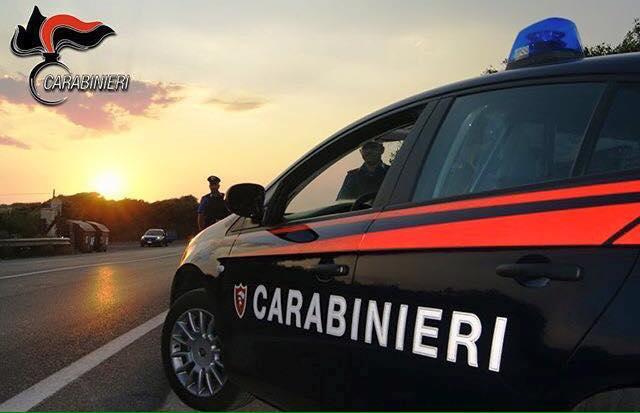 Arma dei carabinieri, un anno di attività
