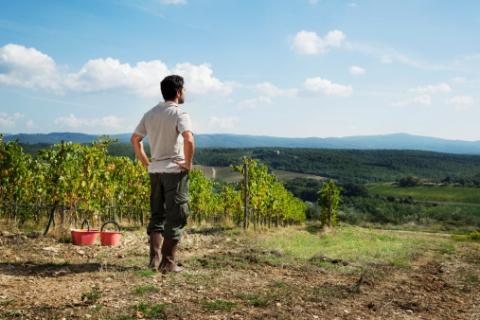 Terreni demaniali ai giovani agricoltori: verso il primo bando della Banca della Terra
