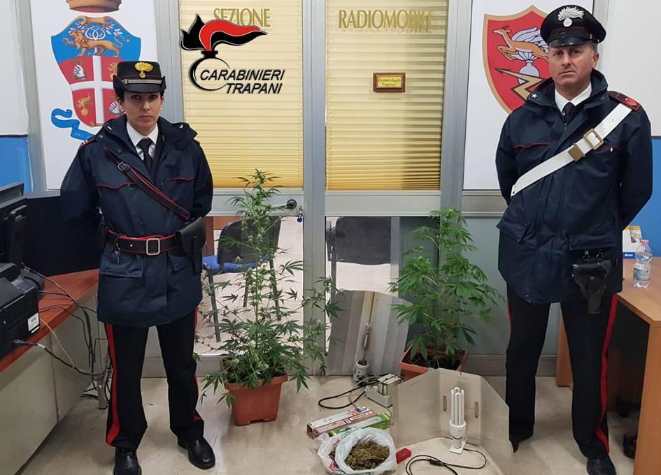 Coltivazione e spaccio di droga, arrestato un uomo