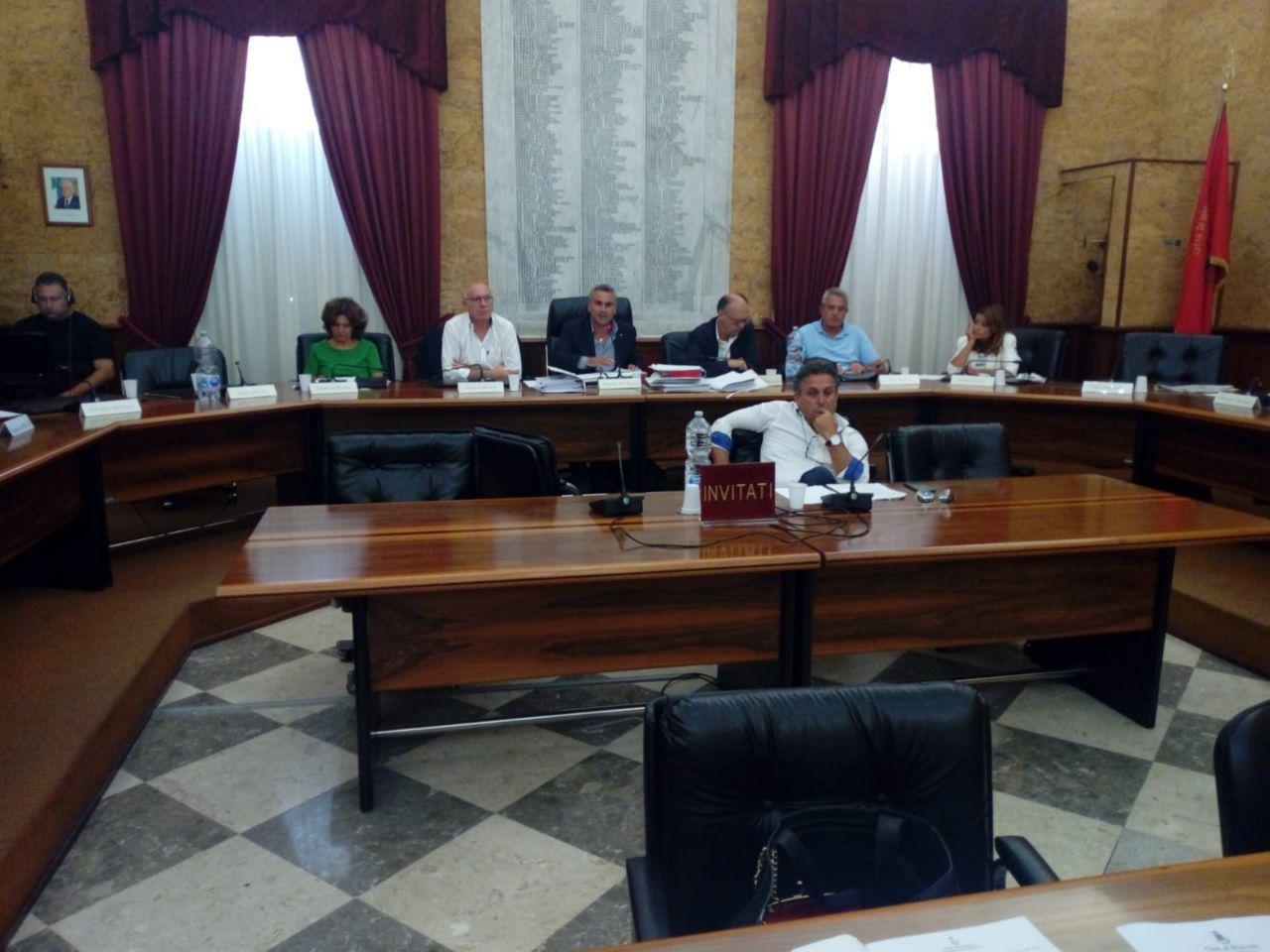 Ex precari e canile municipale al centro del dibattito in Consiglio comunale