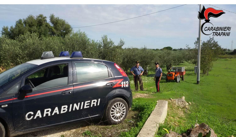 Arrestati mentre rubano olive