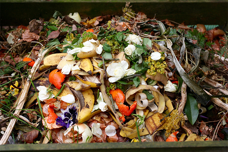 Raccolta organico, a Castellammare possibili disagi