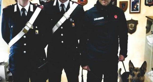 Campobello: i Carabinieri scovano droga in un controllo grazie al cane Mike