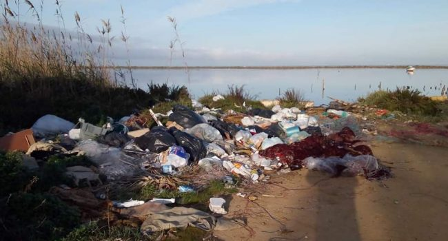 Marsala: « Ri-puliamo il mare di Salinella dalla plastica». Domenica pomeriggio tornano i volontari a Sappusi