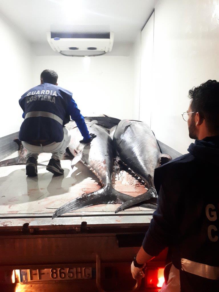Marsala: sequestro di tonno rosso a Sappusi, viene devoluto in beneficenza