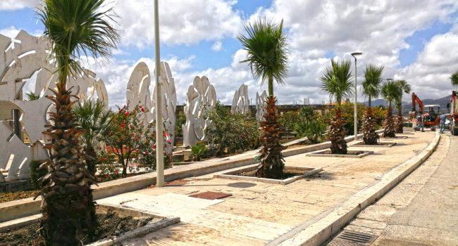 Gibellina: tutela dell'ambiente e intervento su verde pubblico, tornano le palme
