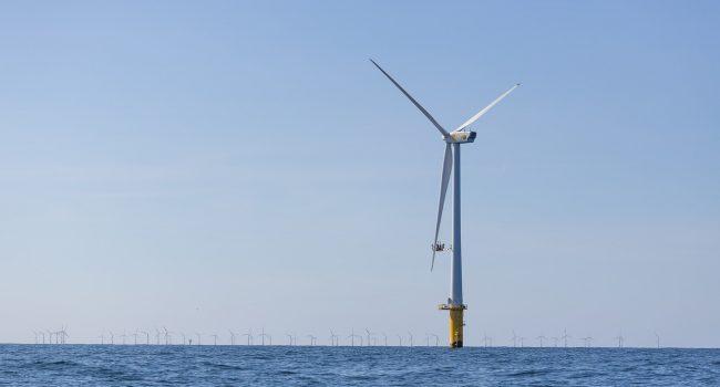 Parco eolico off shore al largo delle Egadi, Base Riformista favorevole al progetto Renexia