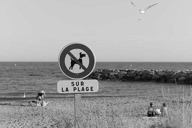 Spiagge e divieti: arriva l'estate, cosa non si può fare?